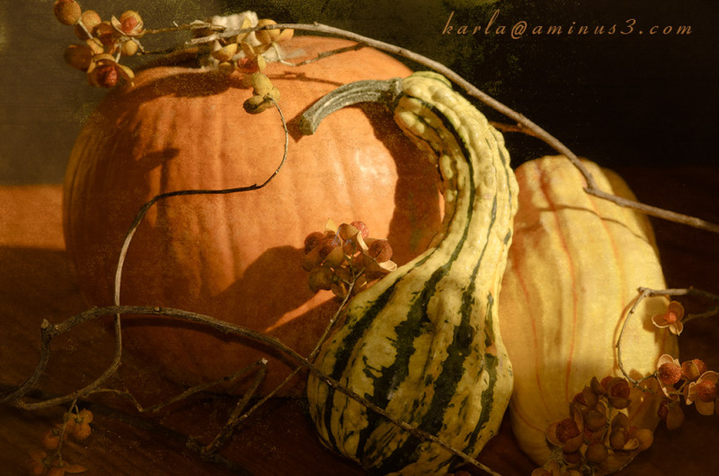 pumpkin, squash, with bittersweet still-life