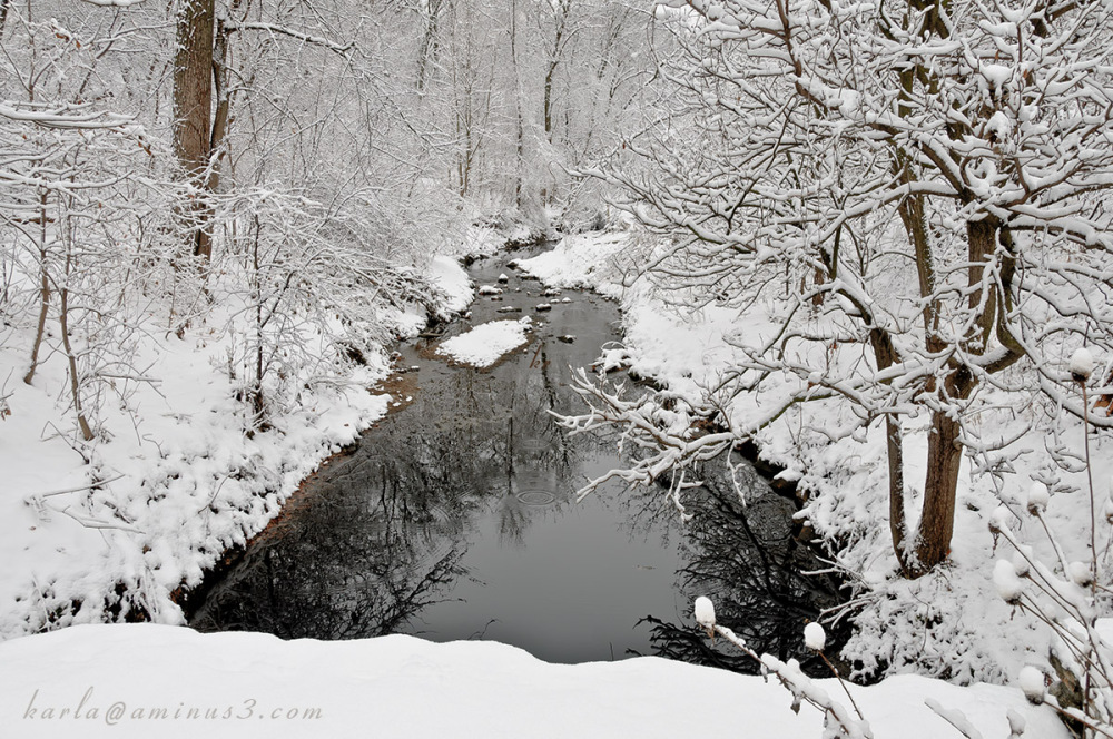 Winter in Elmwood Park in Omaha