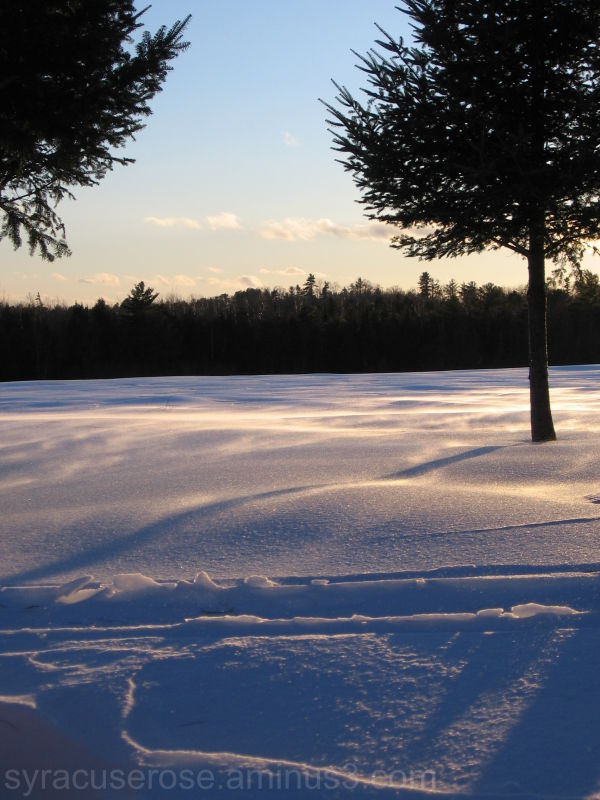 Winter Wind II