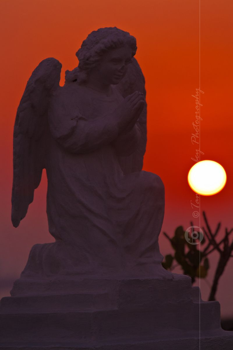 Angel at sunset!