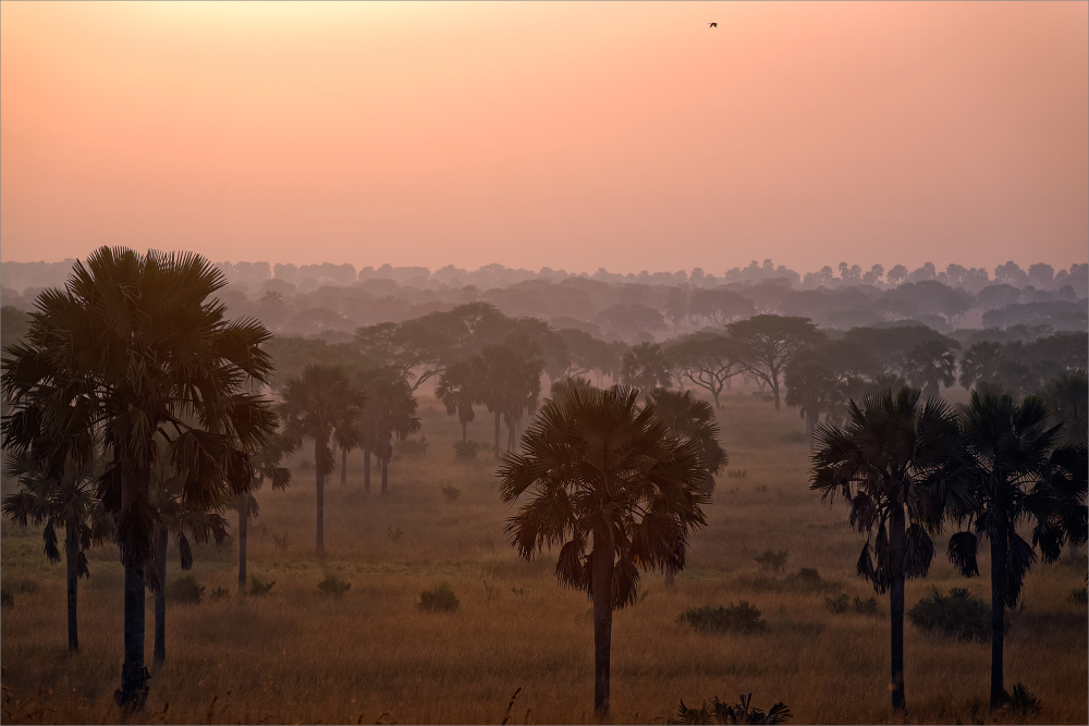 Uganda, december 2013