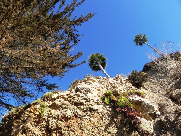 A long climb ahead