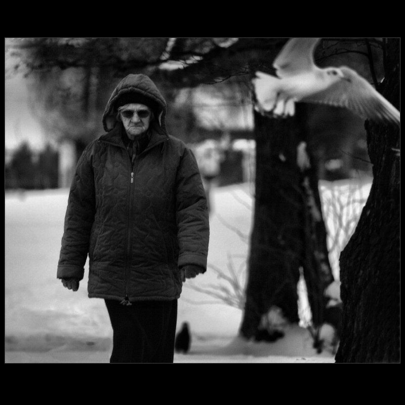no time for old people - winter is back 3