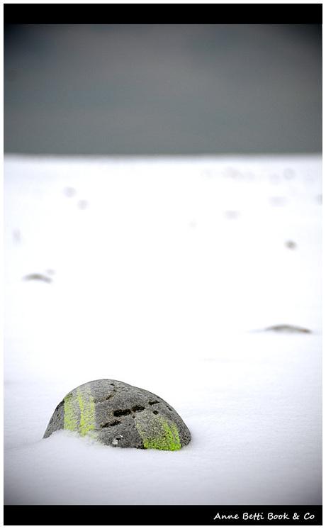 Sous la neige, les galets