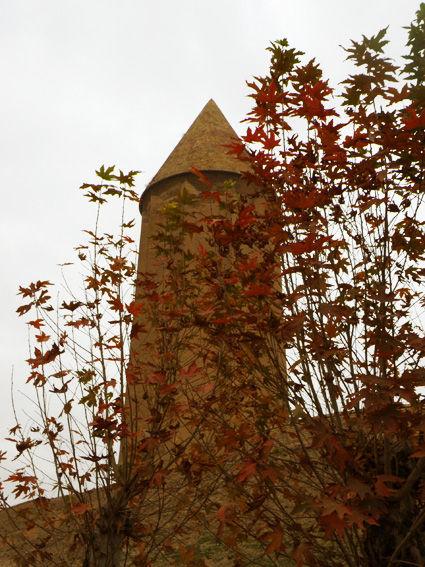 Qaboos Tower      برج قابوس