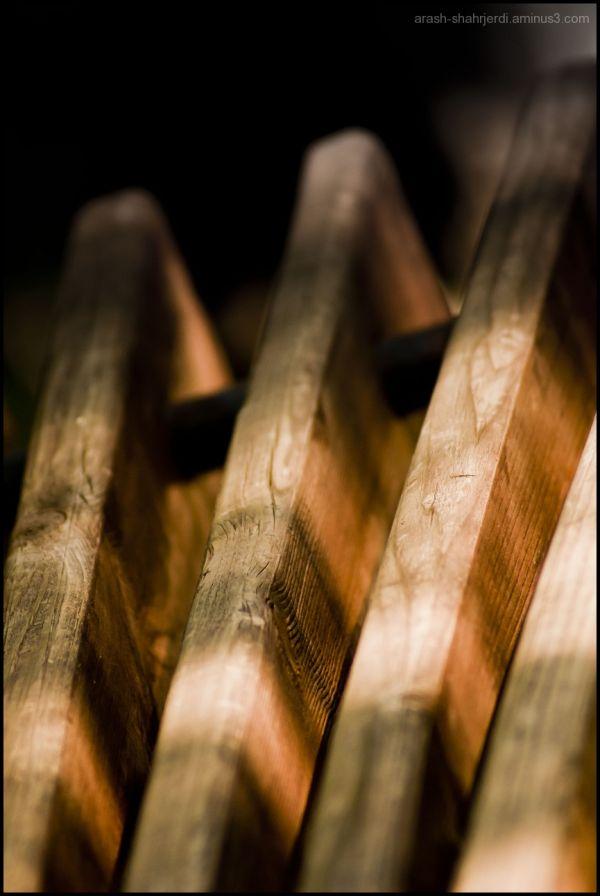 Arash Shahrjerdi Wood