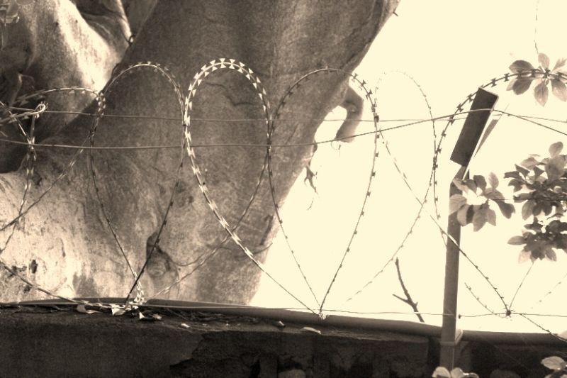 Spiky heart <3
