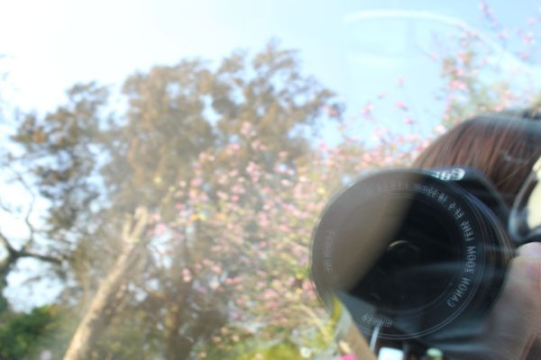 Me on the car window reflection!