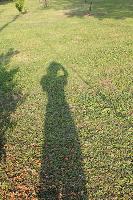 Me in the shadow : D