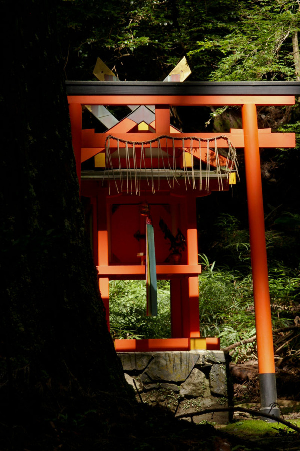 Small Shrine In The Forest