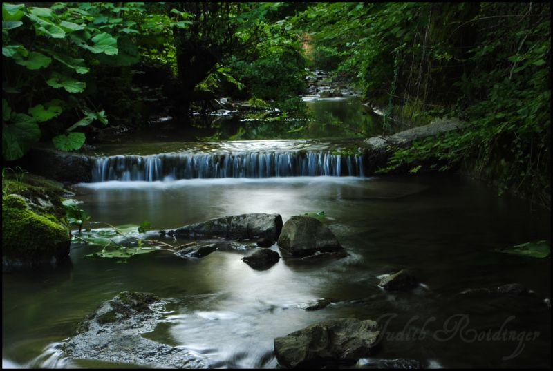 Little river in Oberschlierbach/ Austria