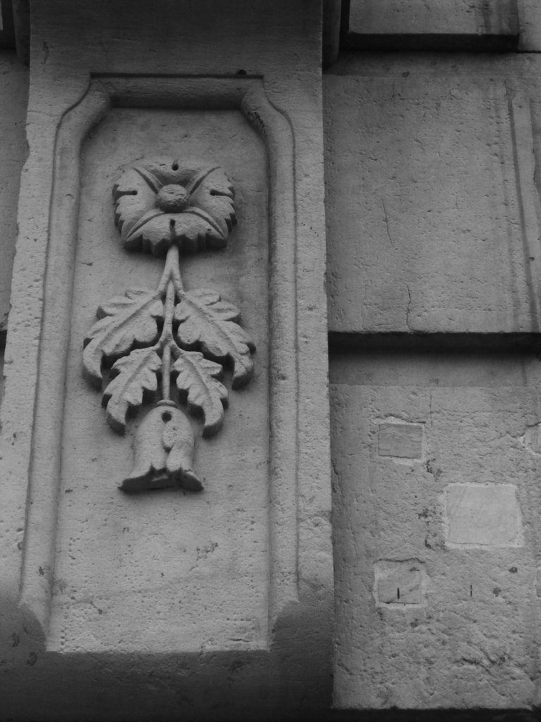 Flor de Piedra
