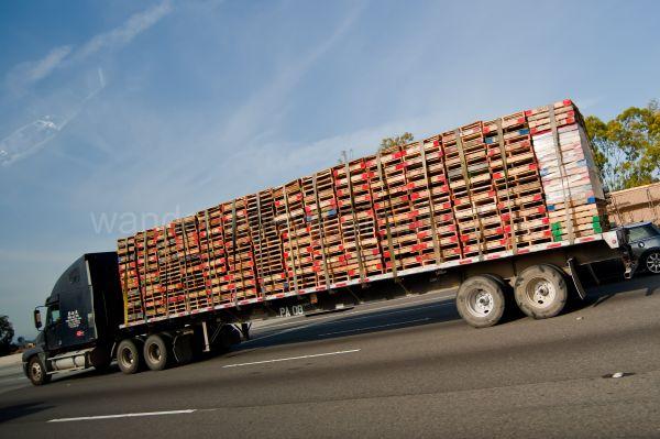 Truck load of Skids