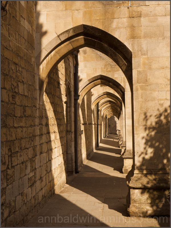 Afternoon shadows on Winchester arches