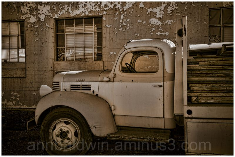 Old Dodge truck in abandoned lot