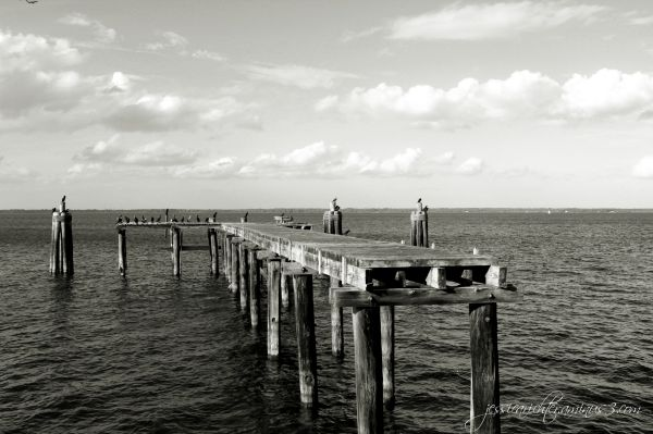 A Warf to Nowhere