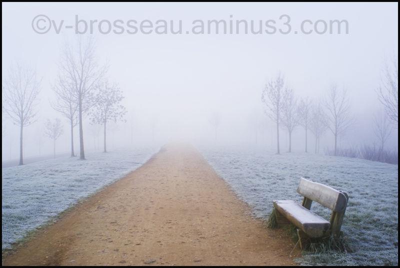 un banc, matin d'hiver