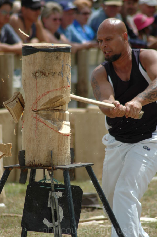 Axemen Games at the A&P shop