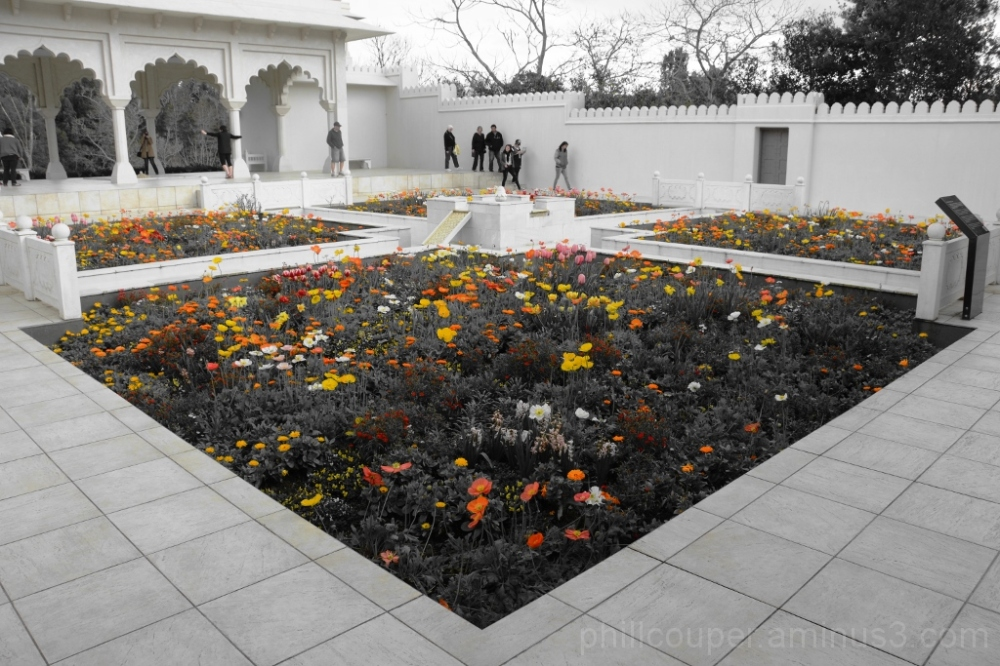 Indian Garden @ The Hamilton Botanical Gardens