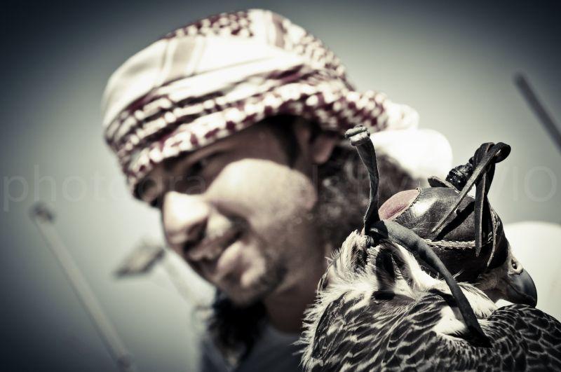 Falcon, Bedouin, Bastakiya, Duba