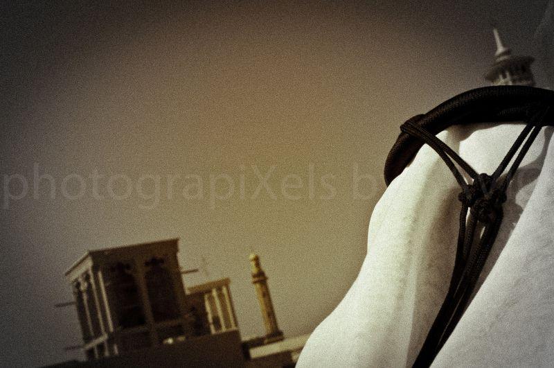 Arab,Bastakiya,Islam,Dubai,Keffiyeh