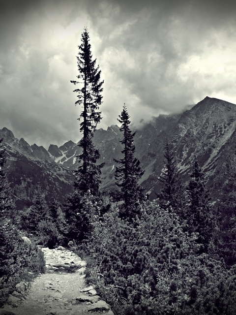 Highland mountain range Vysoké Tatry