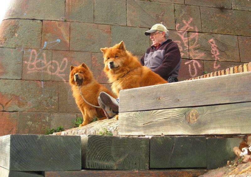 L'homme aux chiens jumeaux.