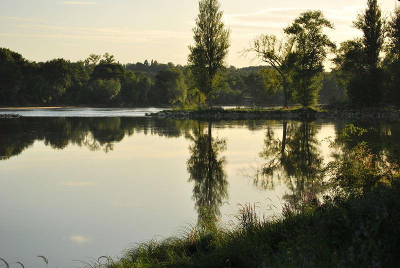 La Loire . L'ile à Gaston .