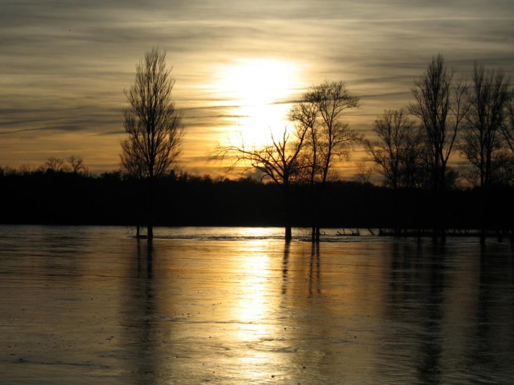 Innondation  . ( la Loire)