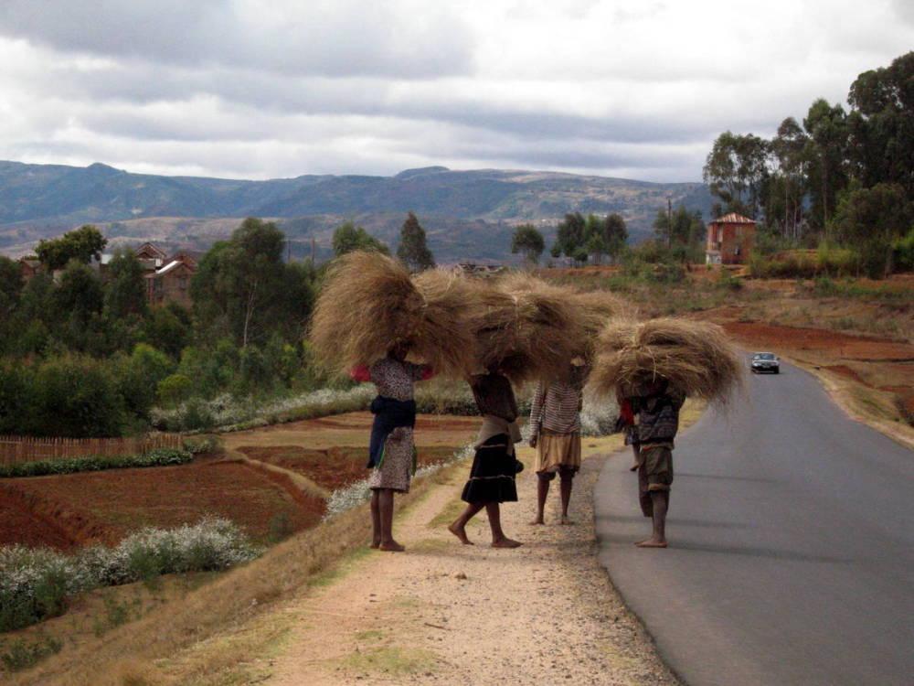 Sur la route à Madagascar .