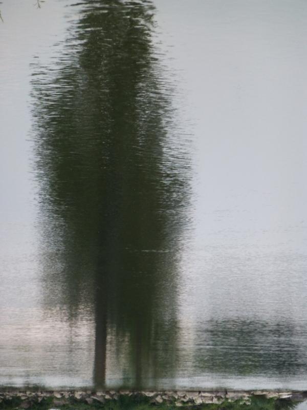 reflet .