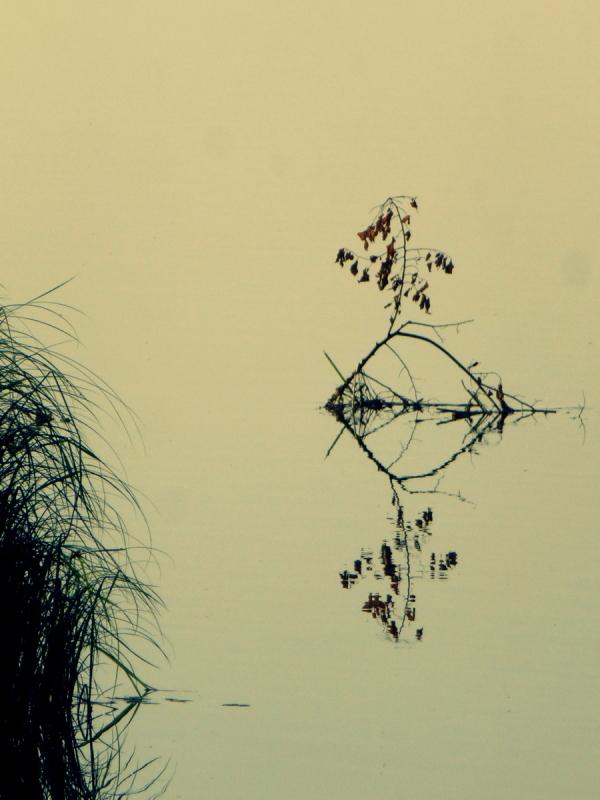 minimalisme .