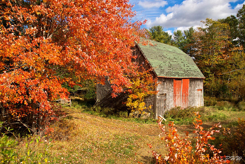 Nova Scotia, Barn, Fall