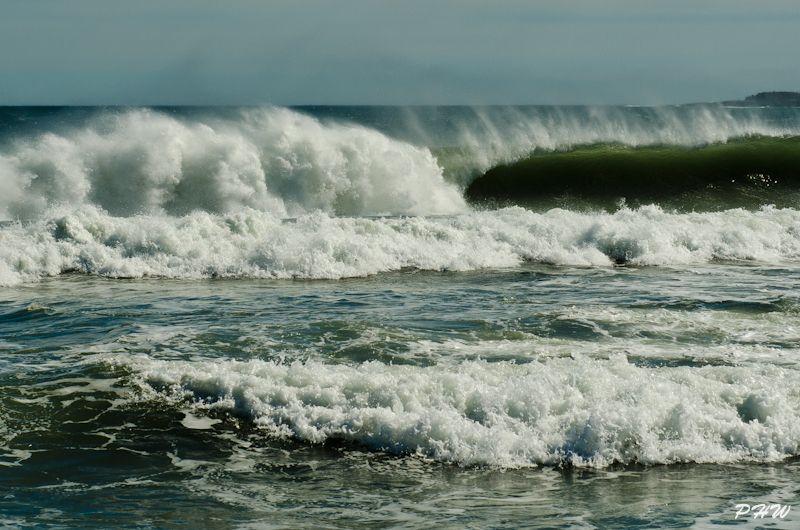Surf's Up - 2