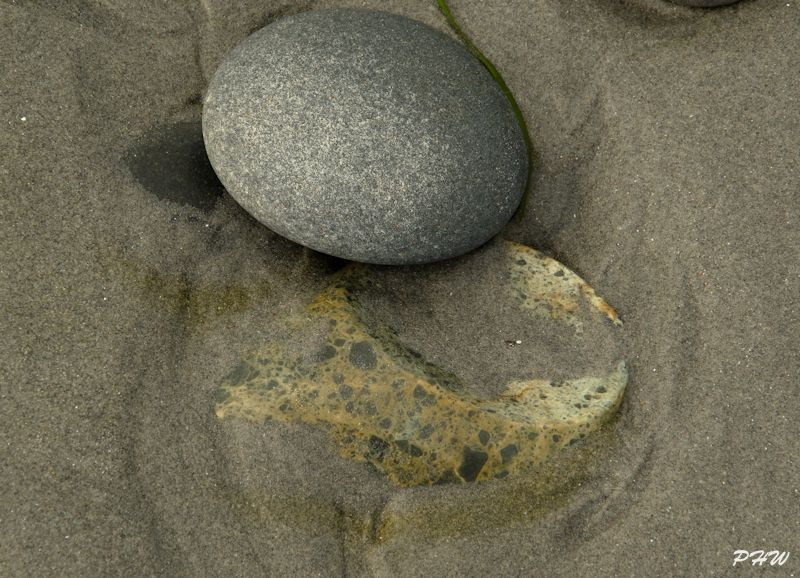 Low Tide #4
