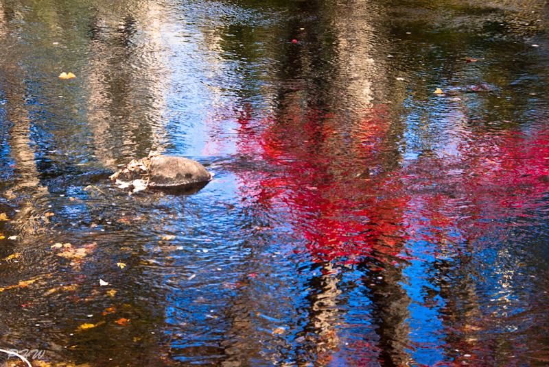 Autumn Reflections #2