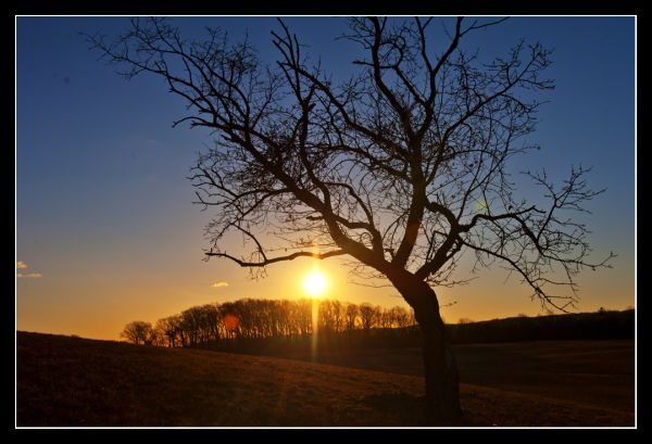 Sunrise in Valley Forge