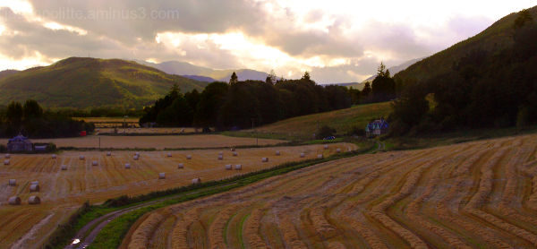 Freshly cut hay from Castle Menzies Scotland