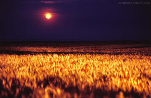 Harvest moon over Goodland, Kansas