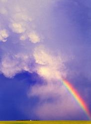 Rainbow and Mammatus