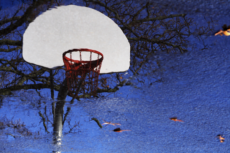 Hoop Dreams - Basketball goal reflection