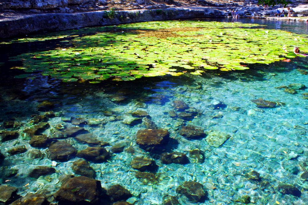 Beautiful waters of Cenote Xlacah at Dzibilchaltun