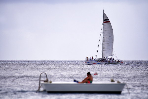 The Fury Catamaran at Cozumel sails with tourists