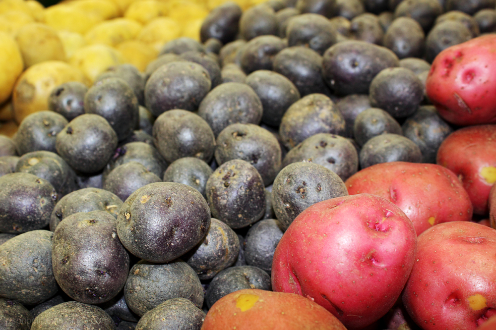 Colorful Potatoes at Whole Foods