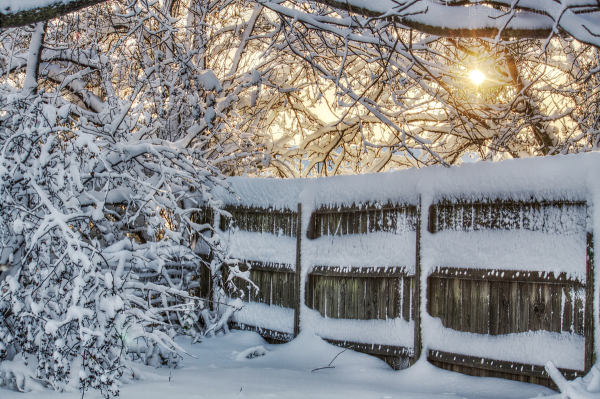 Boxing Day Sunrise over Snowy Fence