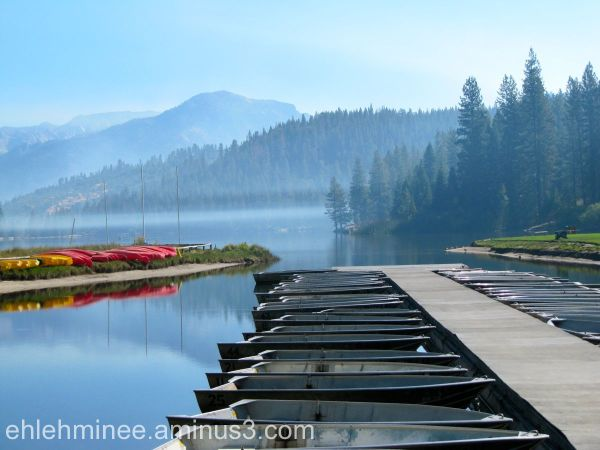Hume lake scene