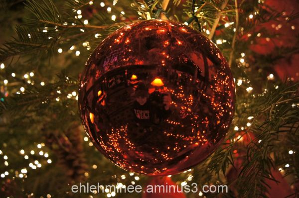Reflection on Christmas Tree Ornament