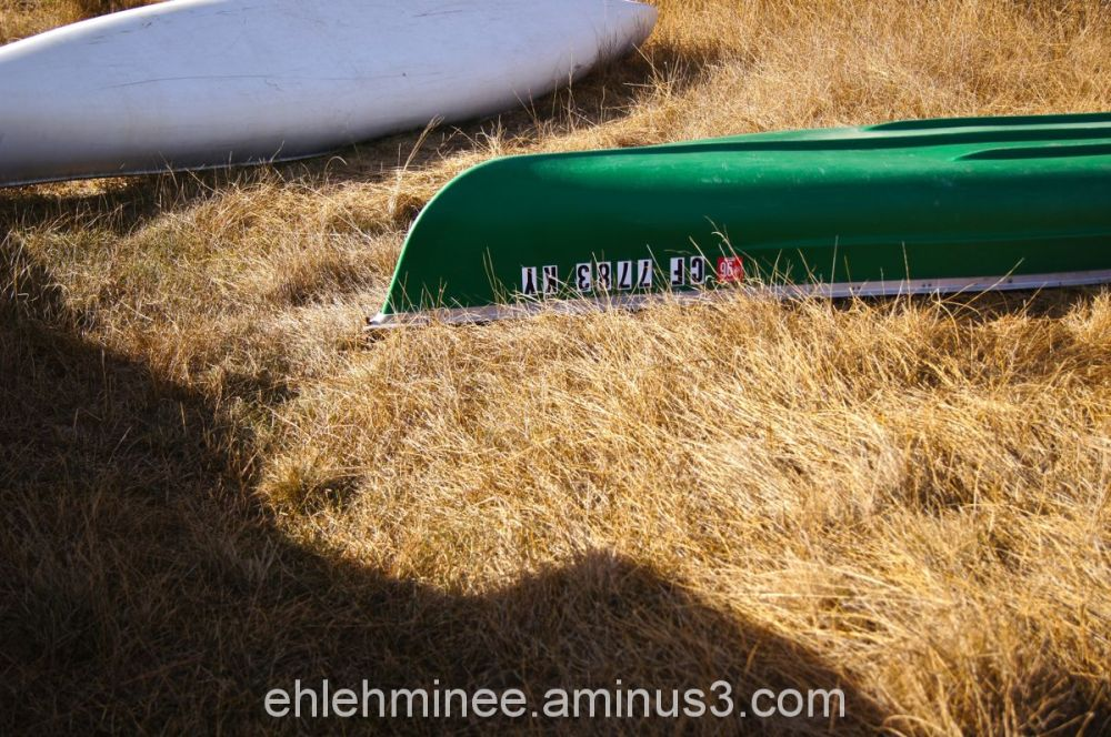 Green and White Canoes in Grass