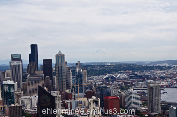 View of Seattle Washington from the Space Needle