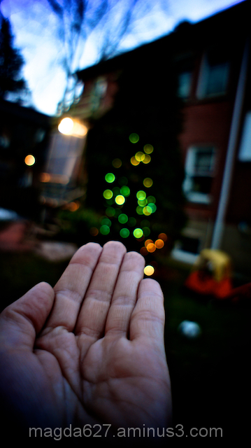 Test: Bokeh effect #2